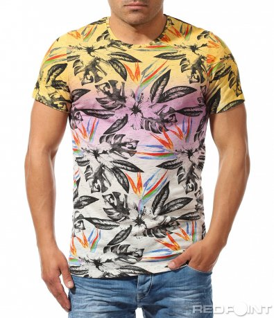 Трицветна тениска с принт 9682